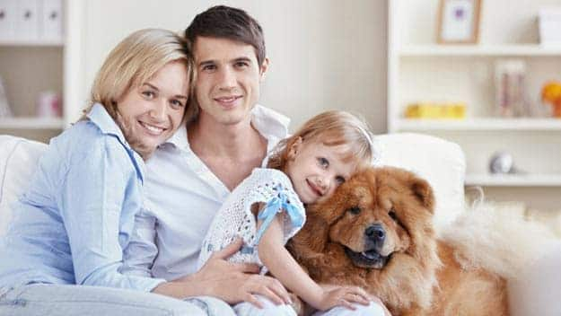Wills & Trusts dog-young-family Direct Wills Isle of Dogs